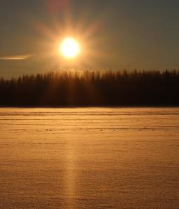 Riippuliitäjät auringossa 183